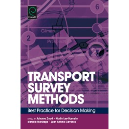 Transport Survey Methods: Best Practice for Decision Making