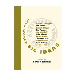 Small World Big Ideas