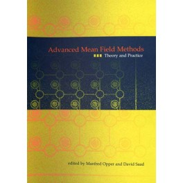 Advanced Mean Field Methods