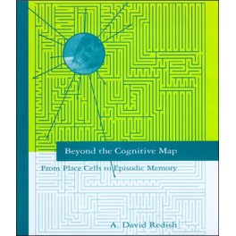 Beyond the Cognitive Map